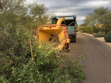 paysagiste: Paysagistes utilisant déchiqueteuse pour enlever et tronçonneuse courrier branches d'arbres