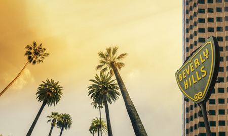 Los Angeles, West Coast Palm Tree Sunshine Stock Photo