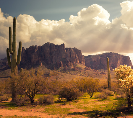 Arizona desert wild west landscape