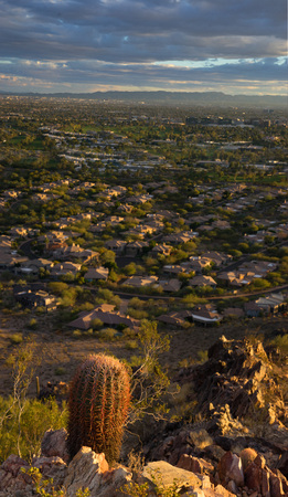 Desert life in Phoenix,Az,USA. View of Pheonix facing South West from Phoenix Mountains Park Recreation Area, and Dreamy Draw Recreation Area