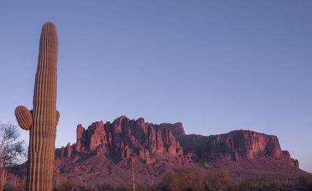 Arizona desert sunset, the red rock of Superstition Mountain glows red, framed by iconic Saguaro Cactus tree.