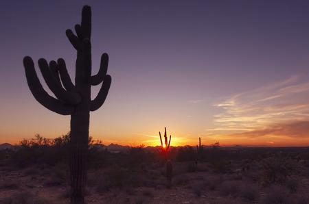 Timelapse desert landscape sunset Stok Fotoğraf