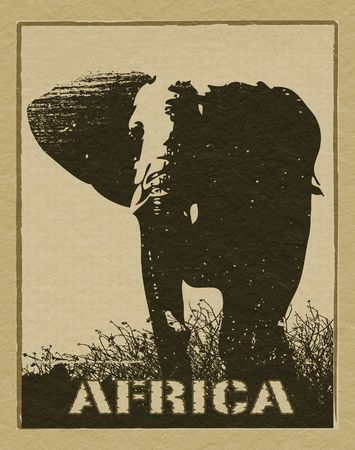 Africa image with elephant silhouette photo