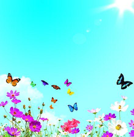 カラフルな春の花と蝶