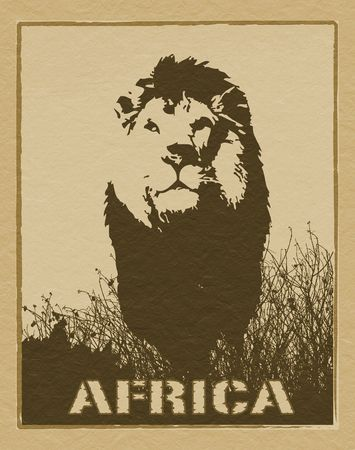 africa jungle: Africa image with lion silhouette Stock Photo