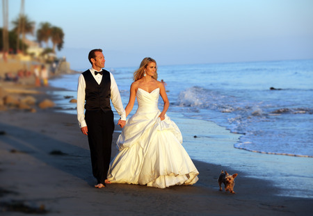 Wedding couple walking on the beach with their dog photo