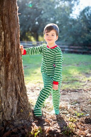 boy kid: Cute little boy in Christmas clothes standing by a tree