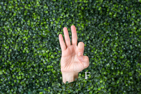 Sign Language Letter F made with hand against green plant background