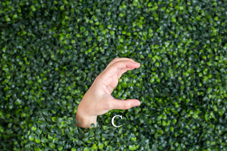 Sign Language Letter C made with hand against green plant background Banque d'images