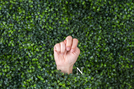 Sign Language Letter N made with hand against green plant background