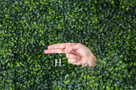 Sign Language Letter H made with hand against green plant background