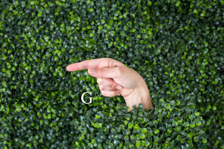 Sign Language Letter G made with hand against green plant background