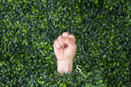 Sign Language Letter S made with hand against green plant background