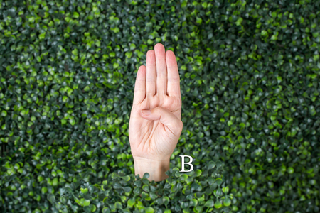 Sign Language Letter B made with hand against green plant background Banque d'images