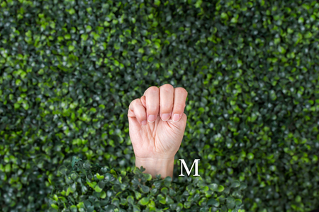 Sign Language Letter M made with hand against green plant background