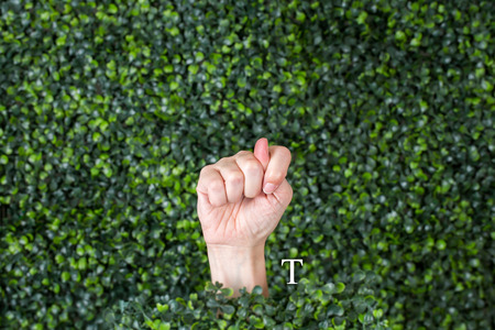 Sign Language Letter T made with hand against green plant background