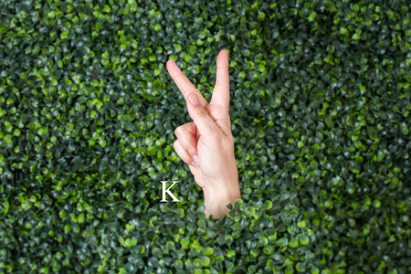 Sign Language Letter made with hand against green plant background Banque d'images