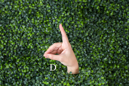 Sign Language Letter D made with hand against green plant background Banque d'images