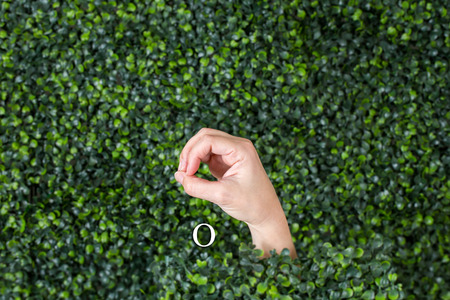 Sign Language Letter O made with hand against green plant background