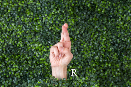 Sign Language Letter R made with hand against green plant background