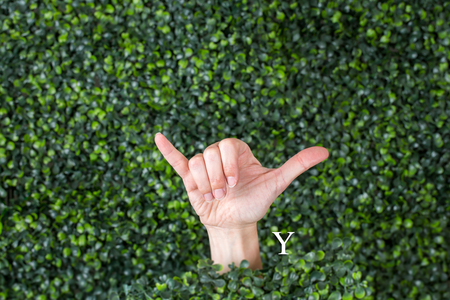Sign Language Letter Y made with hand against green plant background