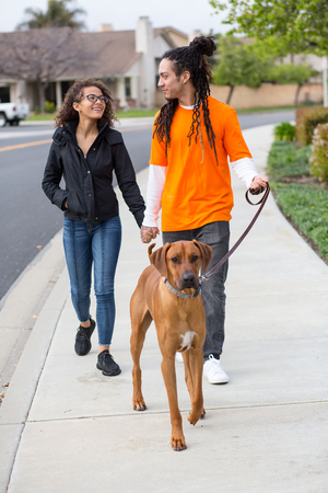 Young couple walking their dog outside Banque d'images