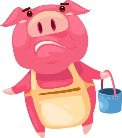 pig walk  Vector