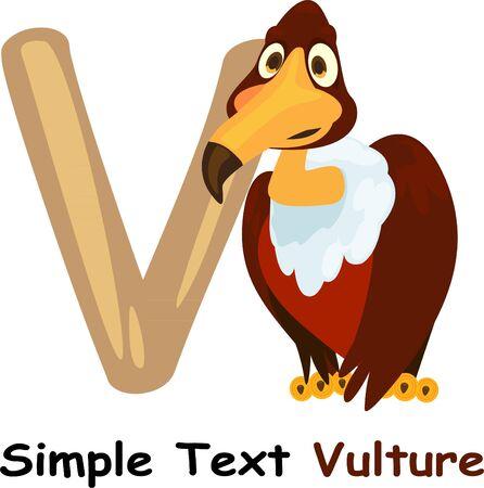 vulture: illustration abc Illustration