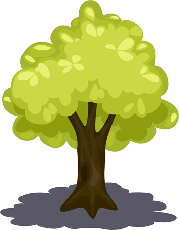 illustration tree  Vector