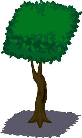 illustration tree  Vector