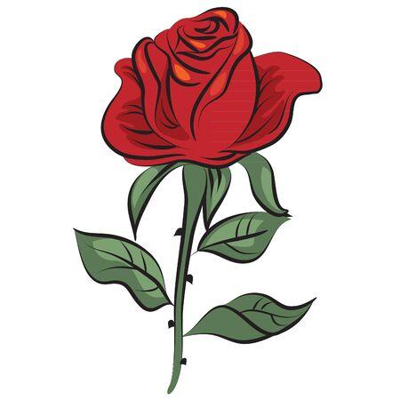 rose bush: flower vector