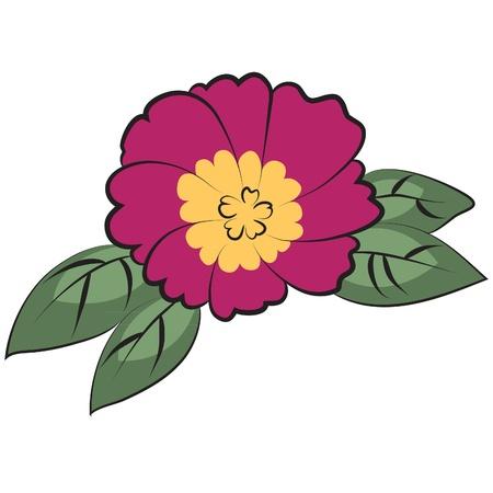 flower vector  Vector