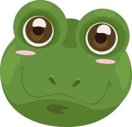 animals amphibious: mask frog Illustration