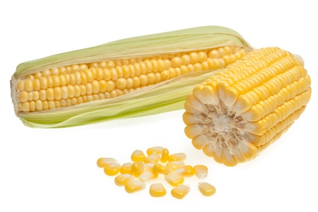 Grains of corn isolated on white background photo