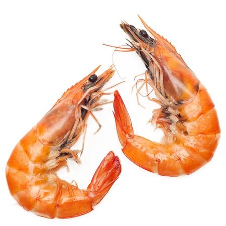 shrimp cocktail: Close up shrimp isolated on white background