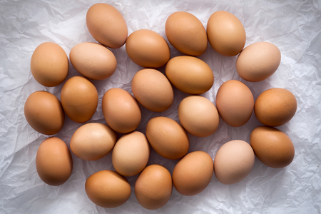 poultry: chicken eggs flat lay still life Stock Photo