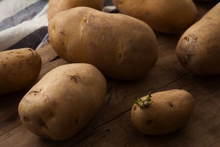 russet: potato ingredient raw rustic still life wood black background