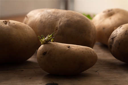 potato ingredient raw rustic still life wood black background