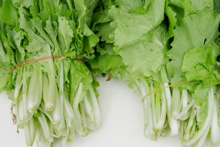 elastic band: The chinese flowering cabbage with elastic band.