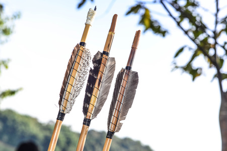 multiple targets: arrows hunting