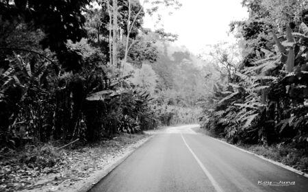 b w: Road in W & B