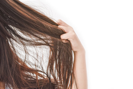 Combing with brush and pulls long hair. Daily preparation for looking nice, Long Disheveled Hair,Holding Messy Unbrushed Dry Hair In Hands. Hair Damage, Health And Beauty Concept. Archivio Fotografico