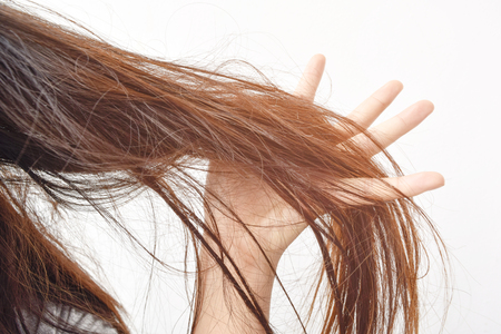 Combing with brush and pulls long hair. Daily preparation for looking nice, Long Disheveled Hair,Holding Messy Unbrushed Dry Hair In Hands. Hair Damage, Health And Beauty Concept. Standard-Bild