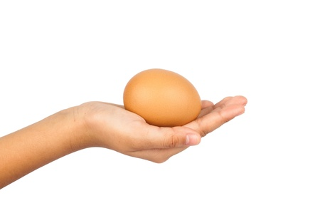 children hands holding egg, isolated on white background photo