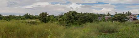 applet: Overgrown garden in urban - Panoram Effect Stock Photo
