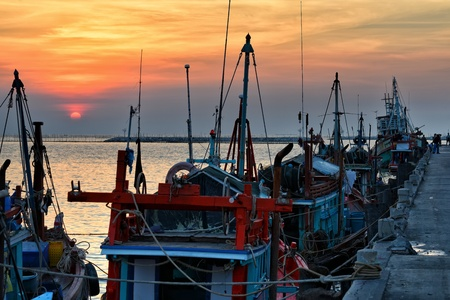 Fishing boats at sunset  photo