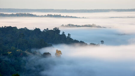 over hill: Aerial view of fog over hill of north Thailand