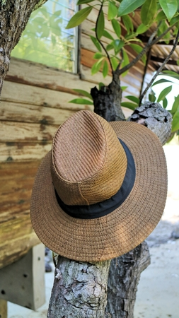 woven: Brown woven hat on branches Stock Photo