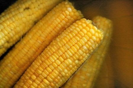 yellow corn: Boiled sweet corn
