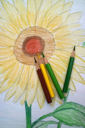 colored pencils: Colored pencils with sunflower Stock Photo
